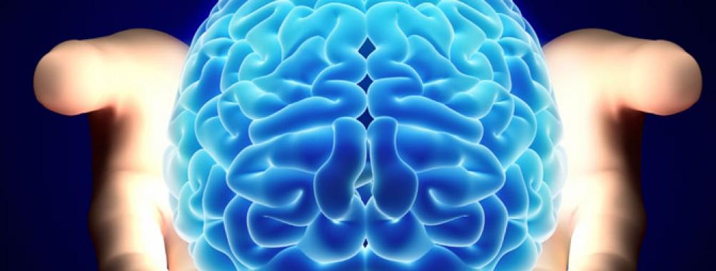 Bipolar Brain Imaging | SHARING BIPOLAR (Disorder)