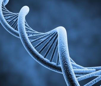 BDRN: Bipolar and Genetics